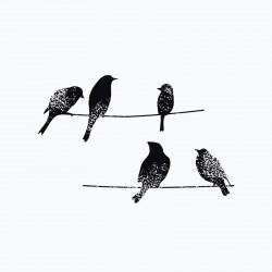T shirt bird